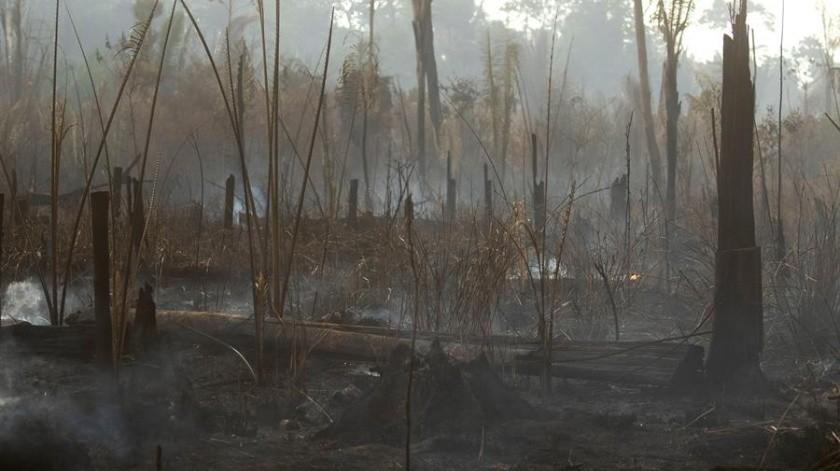 Los incendios han estallado a un ritmo inusual en Brasil este año.(EFE)