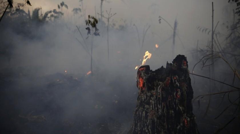 El Gobierno de Estados Unidos aseguró este miércoles estar en desacuerdo con la ayuda de 20 millones de dólares a Brasil movilizada durante la pasada cumbre del G7 para combatir los fuegos de la Amazonía.(AP)