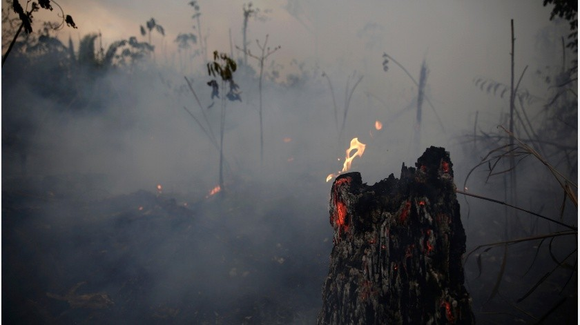 Brasil: deforestación de la Amazonía marca récord desde 2008(AP)
