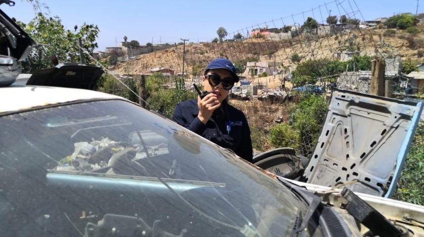 Agentes de la Policía Ministerial del Estado, adscritos a la Unidad de Investigación de Robo de Vehículos de Ensenada, localizaron 31 autos robados.(Cortesía)