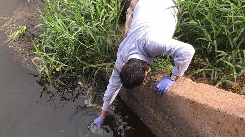 Buscan descartar contaminación de agua en Cajeme(Susana A. Arana)