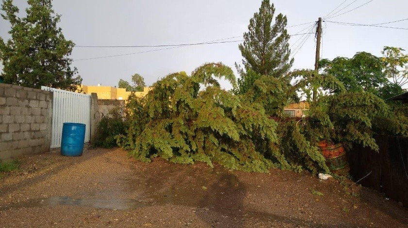 Las lluvias del pasado domingo causaron daños en Agua Prieta.(Banco Digital)
