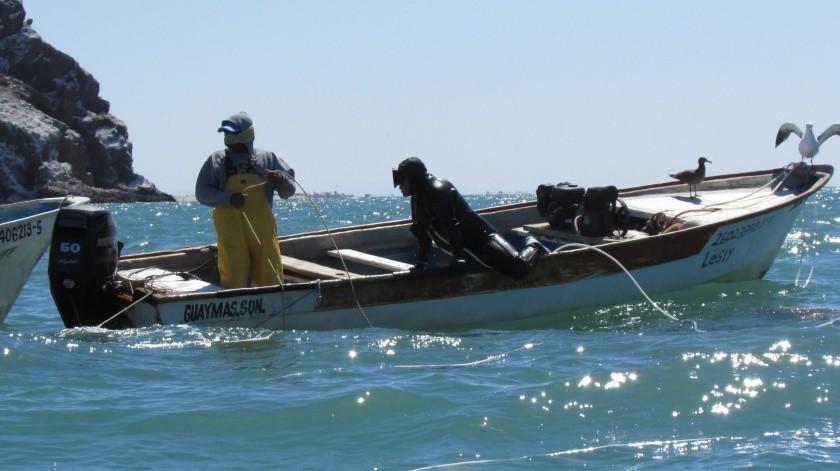 Al no destinarse recursos para la Inspección y Vigilancia, cualquier persona podrá pescar de manera ilegal los recursos en el mar, aseguran pescadores.(Yesicka Ojeda)