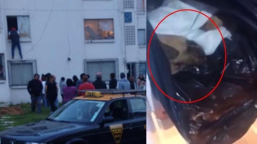 VIDEO: Mujer congelaba perros que secuestraba; vendía su carne(Captura de video)