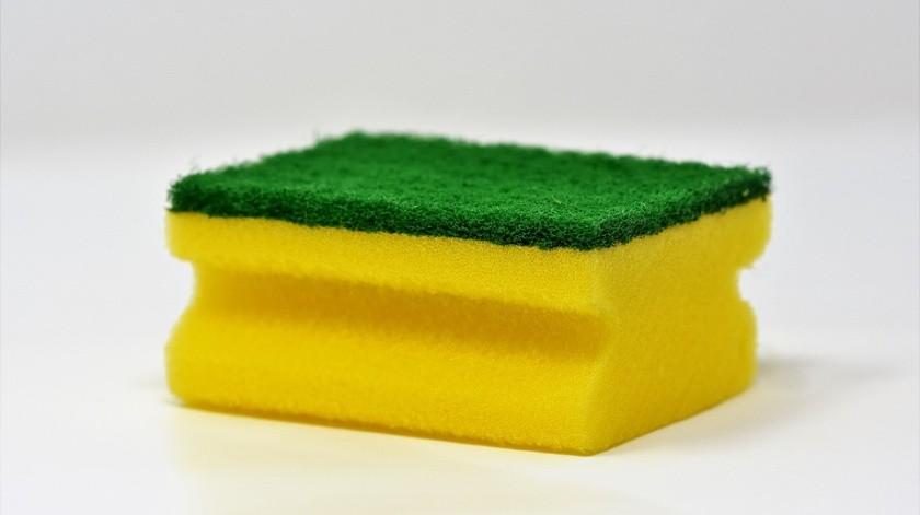 La esponja de cocina podría ser clave para crear antibióticos(Pixabay)