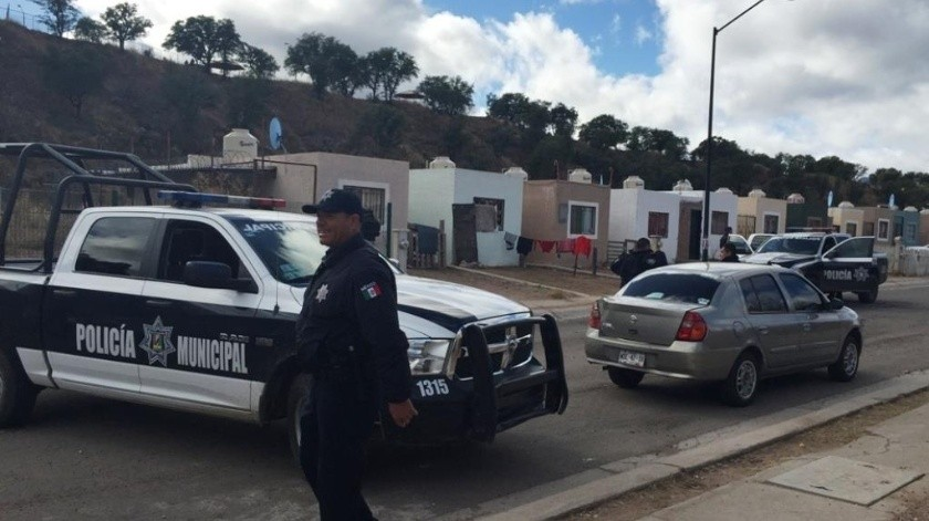 La Policía dio a conocer el reporte del caso de la muerte de un perro pitbull que atacó a un agente.
