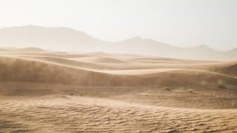 Mueren 35 migrantes en desierto de Sonora- Arizona durante el verano
