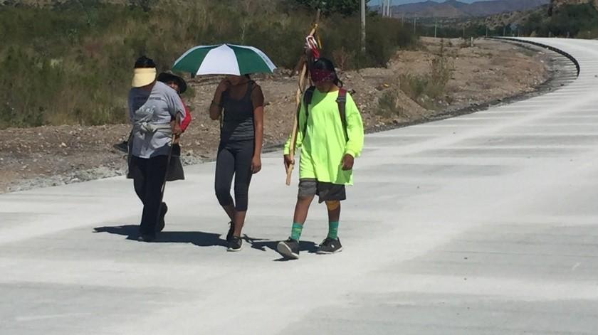 Buscan resguardar a 3 mil peregrinos que se dirigen a Magdalena de Kino.(Archivo.)