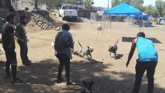 Adaptan jóvenes casa para rehabilitar animales en Tijuana