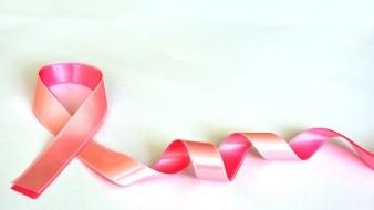 Carbohidratos, carne, estrés y botellas, son factores de cáncer de mama