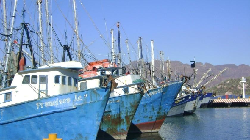 """""""Narda"""" trajo de regreso a los barcos camaroneros a puerto e impidió la salida a pangas, en Guaymas.(Yesicka Ojeda)"""