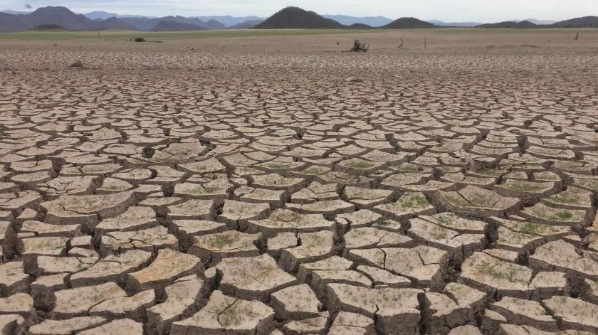 La Conagua informó que 69 municipios de Sonora tienen algún problema de sequía.(Archivo.)