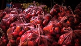 Presentan en Sinaloa iniciativa para prohibir bolsas de plástico