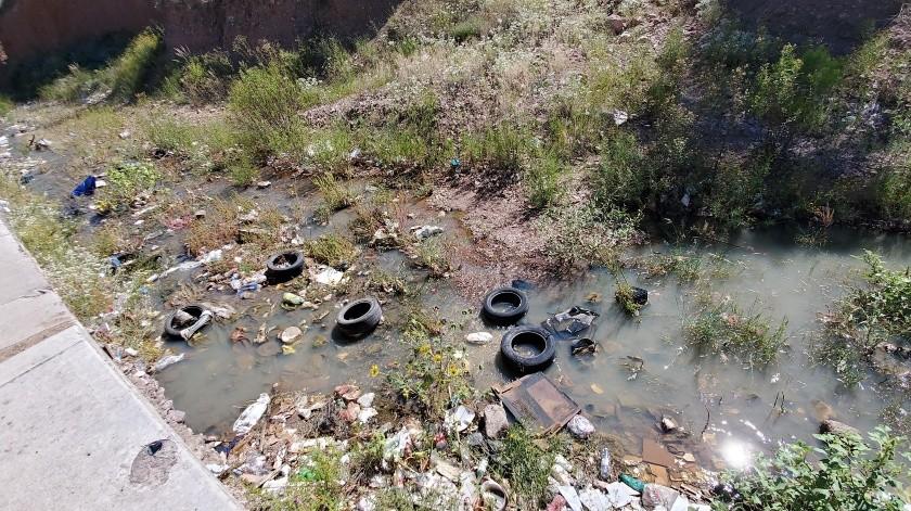 El arroyo de La Mesa se encuentra lleno de basura, animales muertos y aguas negras(Rubén Ruiz)