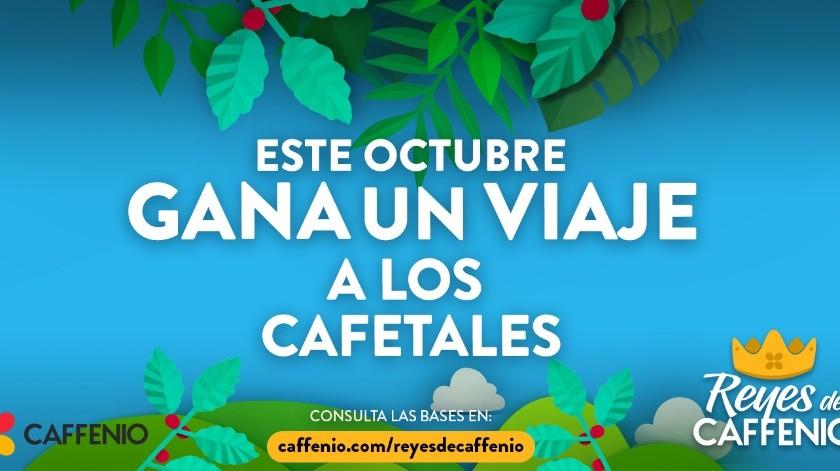 Caffenio te regala un viaje a los cafetales y ¡un año de café gratis!(Caffenio.)
