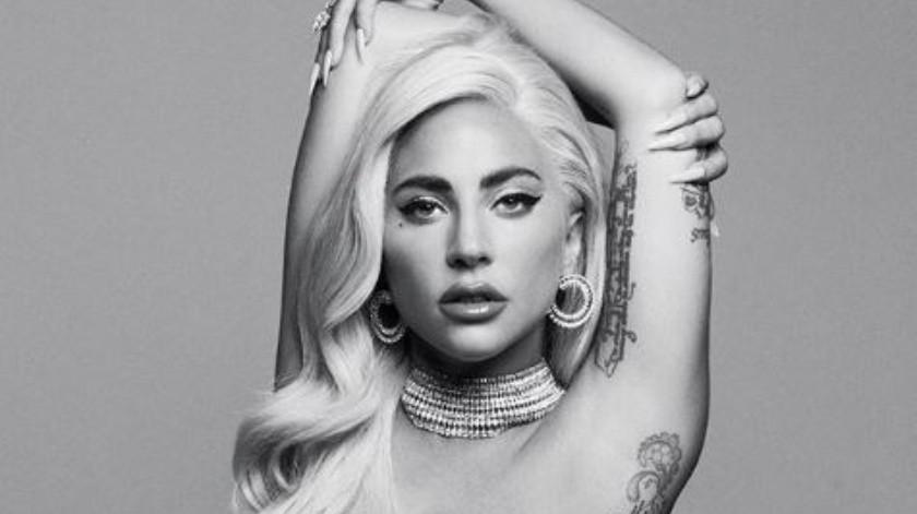 Lady Gaga cayó del escenario junto a un fanático.(Instagram/Lady Gaga)