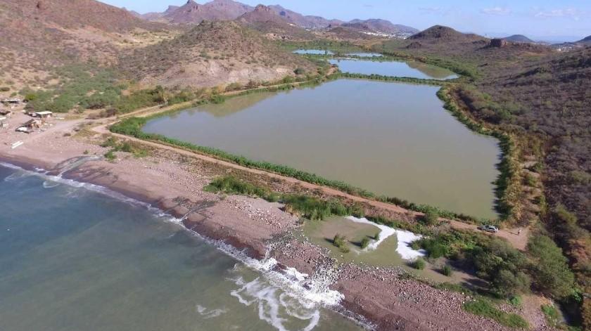 Bahía de Guaymas tiene cinco fuentes de contaminación(Yesicka Ojeda)