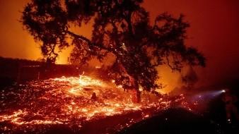 Por su parte San Diego Gas & Electric anunció que sus cortes afectarán a cerca de 24 milclientes.