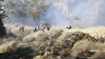 Incendio forestal afecta área del Cerro El Bachoco en Hermosillo