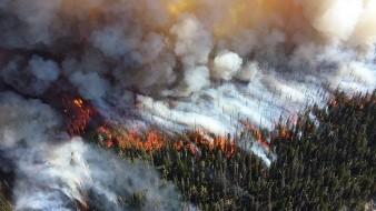 VIDEO: Así fue como inició el incendio forestal en California