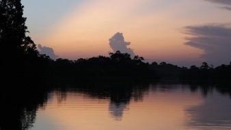 Amozonía brasileña sugiere que países ricos paguen por daño ambiental