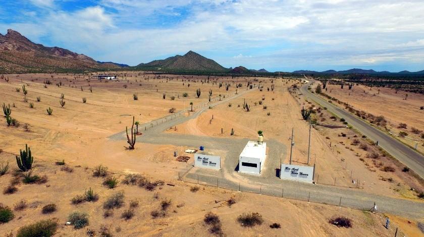Predio de Bahía de Kino donde se denunció la tala de vegetación endémica en una superficie de 50 hectáreas.(Julián Ortega)
