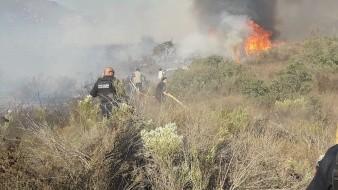 Tiene Conafor tres días para validar daño por incendios