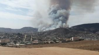 Actualmente hay cuatro incendios forestales activos en Ensenada.