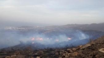 Un total de cuatro incendios forestales se registran esta tarde en Rosarito, dio a conocer el director de Protección Civil Municipal, Aroldo Rentería.