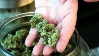 Pretenden eliminar límite a portación de mariguana