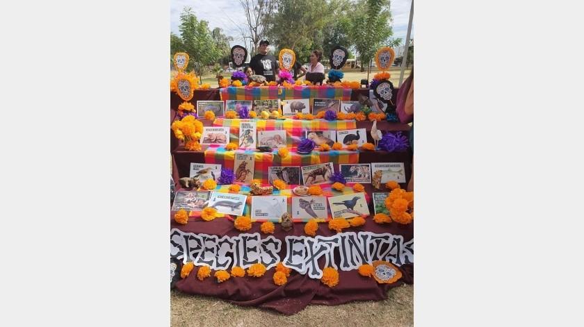 Para celebrar el Día del Ecológo estudiantes de la Universidad Estatal de Sonora dedicaron un altar a las especies extintas.(Tanya Vázquez)