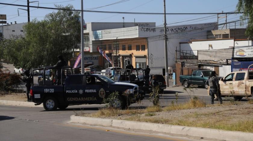 El SAT, en coordinación con la Sedena y la Policía Federal realizaron un operativo este martes.(Sergio Ortiz)