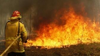 Este de Australia es declarado en estado de emergencia por incendios forestales.