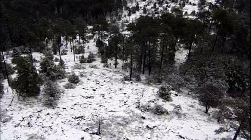 Se registraron las primeras nevadas en Durango.(Twitter @CEPCDurango)