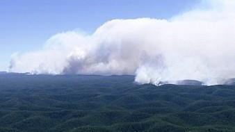 Nueva Gales del Sur ha perdido más de 200 casas desde el viernes, mientras que 14 casas han sido destruidas en el sureste de Queensland.