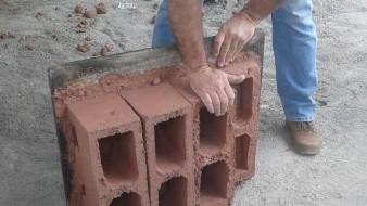 Crean block ecológico con nopal y escombro