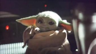 Bebé Yoda es más popular que candidatos demócratas en EU: Estudio