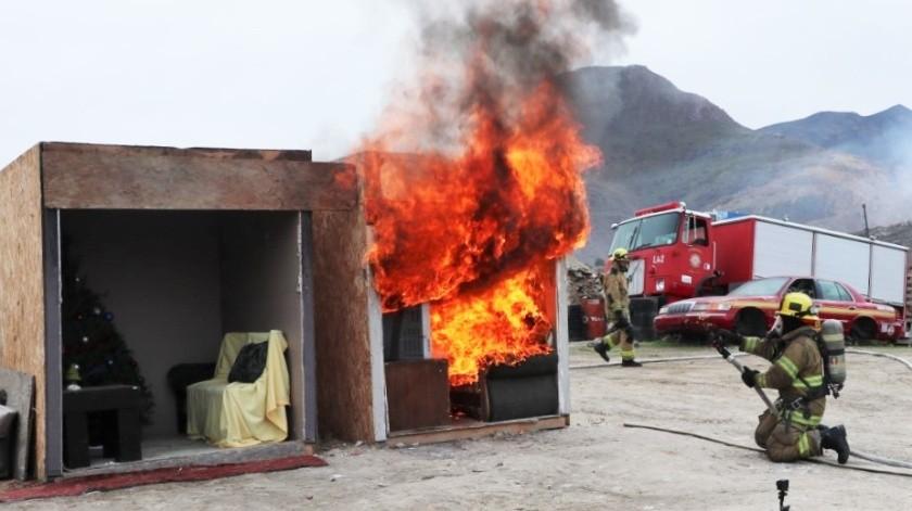 Un arbolito tradicional tarda 20 segundos en arder por completo.(Cortesía)