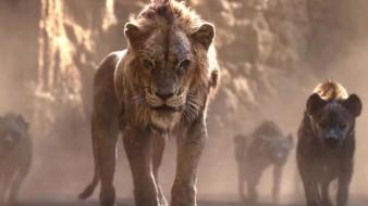 """La trama de esta historia inicia con el nacimiento del próximo rey de La Sabana, heredero del trono de """"Mufasa"""", su hijo llamado """"Simba"""" que es alabado y recibido por todo el reino animal."""