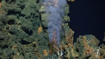El hallazgo supone un importante avance en el conocimiento de la zona, que por su complejidad geológica y biológica es considerada un laboratorio natural.