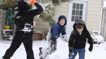 Ciudad de Wisconsin sopesa despenalizar las peleas con nieve