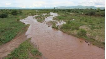 Grupo México niega afectaciones en Río Sonora