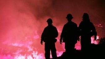 VIDEO: Incendio forestal alcanza 50 viviendas en Valparaíso