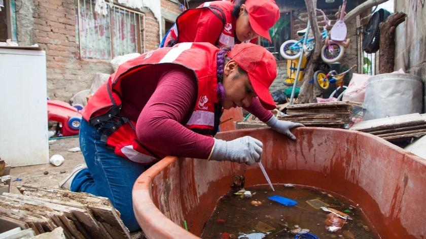 En lo que va del año se han presentado un total de 642 casos de dengue(Banco Digital)
