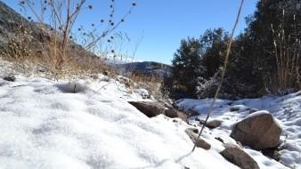 Prevén nevadas en sierras de Baja California, Sonora, Chihuahua y Durango