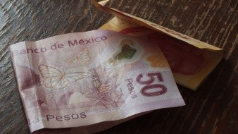 En la nueva moneda se observa un ajolote, animal endémico de México, lo que fue del agrado de muchas personas.