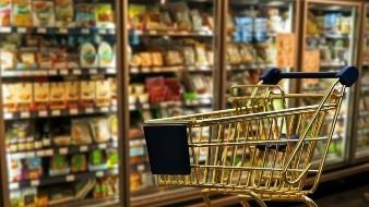 Aumento a precio de alimentos pulveriza incremento a salario mínimo: Anpec