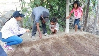 Crean huertos familiares entre pescadores de Kino