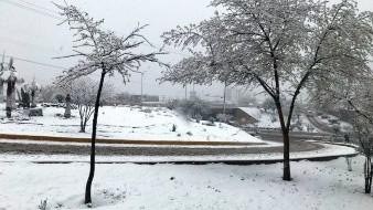 Se prevé descenso de temperatura en el norte, el centro y el oriente de la República Mexicana, con temperaturas mínimas matutinas de -10 a -5 grados Celsius.