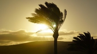 Frente Frío Número 30 generará lluvias y vientos muy fuertes